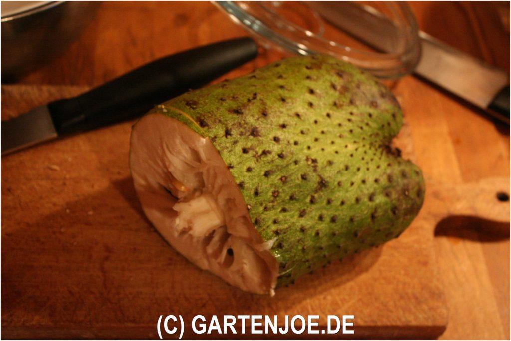 Annona muricata oder Guanabana die Stachelannone Frucht
