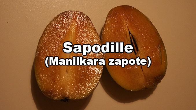 Manilkara zapote Breiapfel Sapotillen Frucht